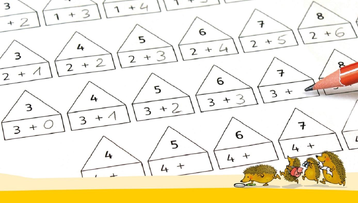 Mathematik verstehen und trainieren