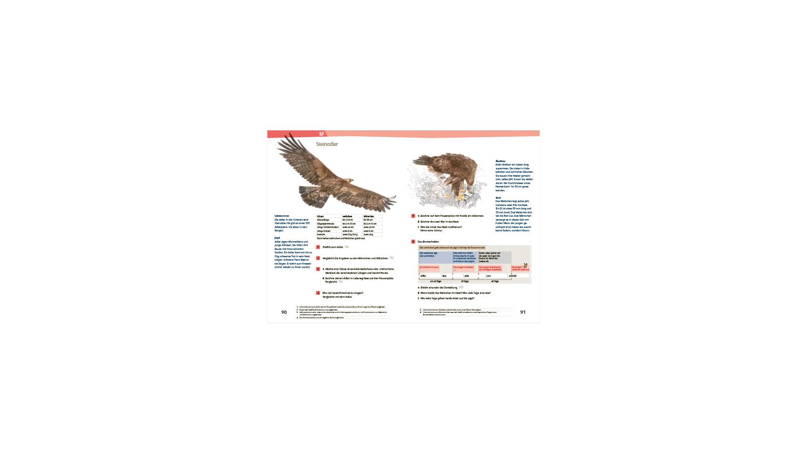 18 schweizer zahlenbuch h1 rundgang 2 2021 klett und balmer